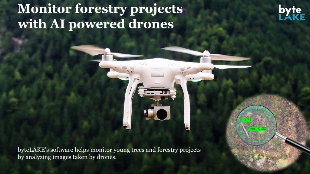 byteLAKE's Computer Vision for Forestry